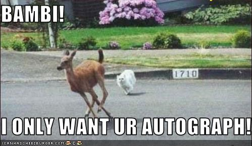 BAMBI!  I ONLY WANT UR AUTOGRAPH!!