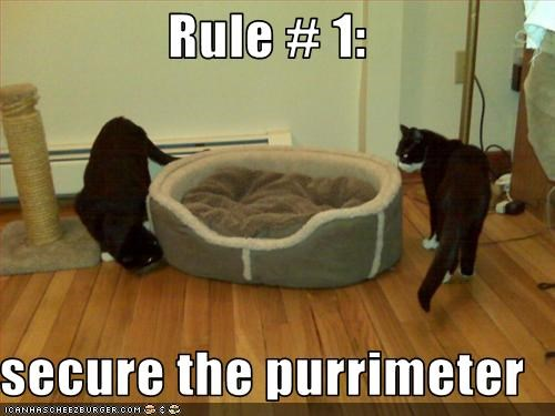 Rule # 1:  secure the purrimeter