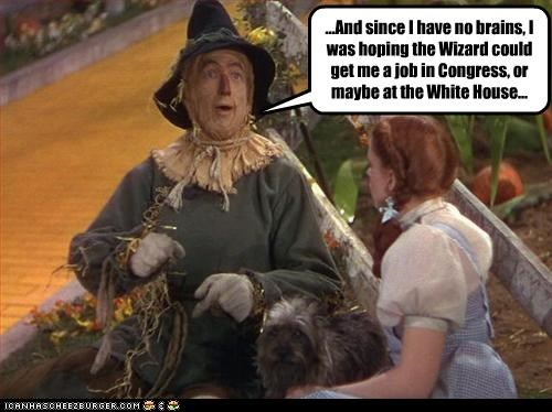 ...And since I have no brains, I was hoping the Wizard could get me a job in Congress, or maybe at the White House...