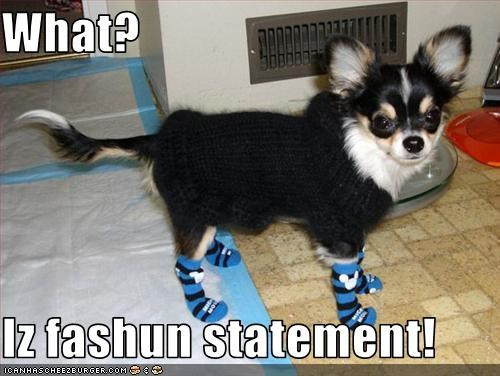 What?  Iz fashun statement!