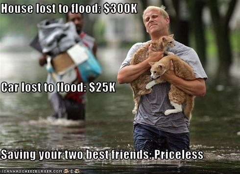 House lost to flood: $300K Car lost to flood: $25K Saving your two best friends: Priceless