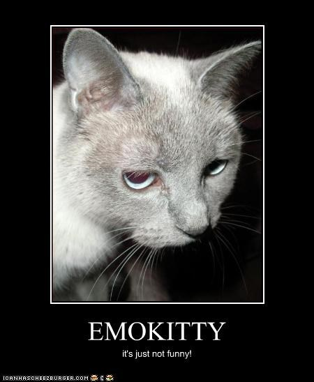 EMOKITTY