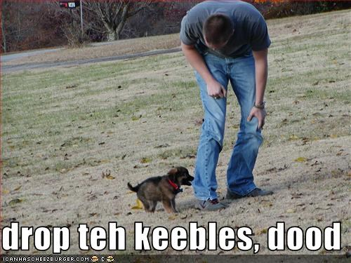 drop teh keebles, dood
