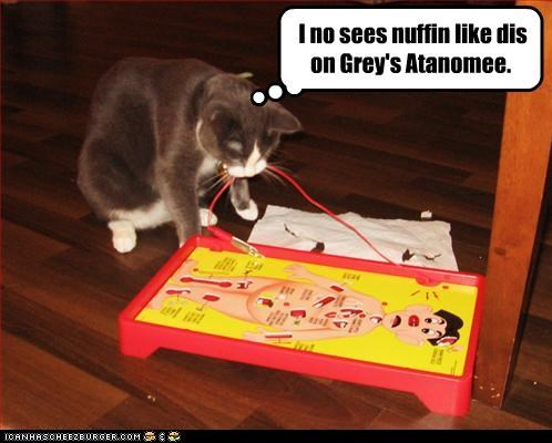 I no sees nuffin like dis on Grey's Atanomee.