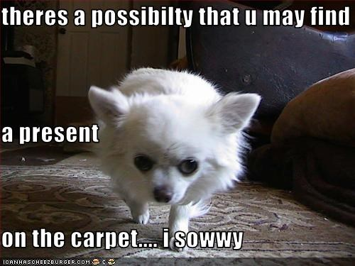 theres a possibilty that u may find a present on the carpet.... i sowwy