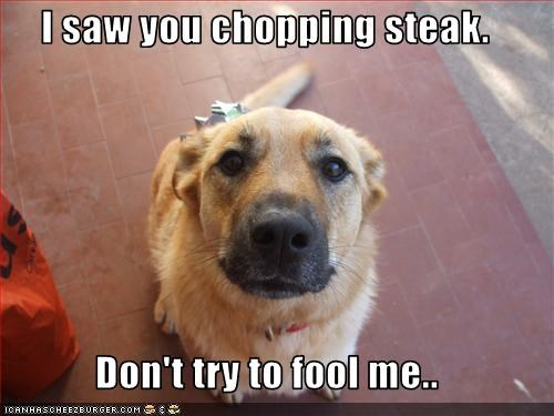 I saw you chopping steak.  Don't try to fool me..