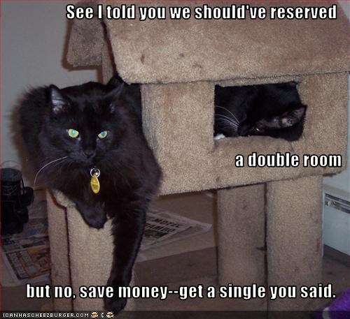 See I told you we should've reserved  a double room but no, save money--get a single you said.