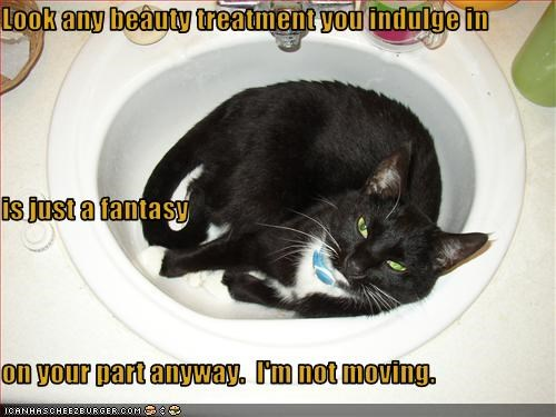 insults,mean,sink