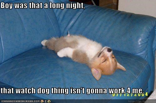 Boy was that a long night,  that watch dog thing isn't gonna work 4 me.