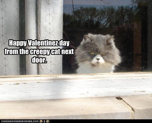 Happy Valentinez day from the creepy cat next door.