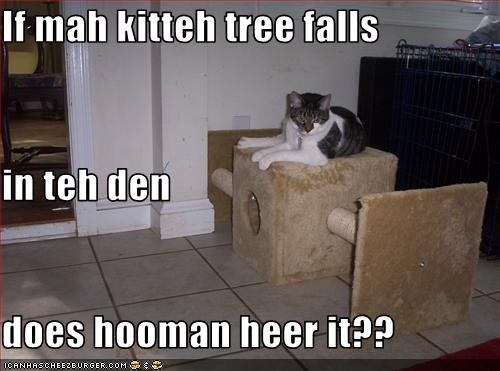 If mah kitteh tree falls  in teh den does hooman heer it??