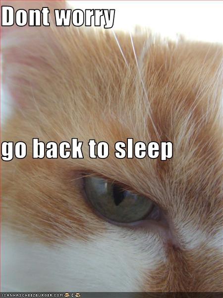 Dont worry go back to sleep