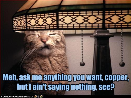 Meh, ask me anything you want, copper, but I ain't saying nothing, see?