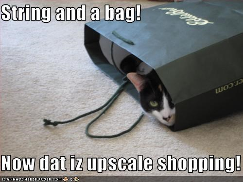 String and a bag!  Now dat iz upscale shopping!