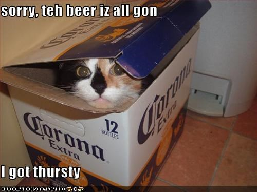 sorry, teh beer iz all gon  I got thursty