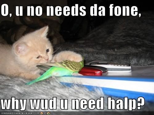 O, u no needs da fone,  why wud u need halp?