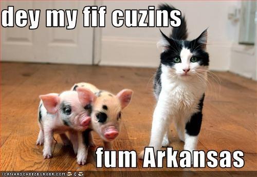 dey my fif cuzins  fum Arkansas
