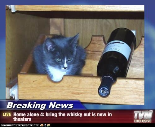 Breaking News - Home alone 4: bring the whisky out is now in theaters