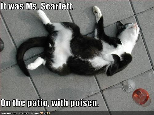 It was Ms. Scarlett.  On the patio, with poisen.