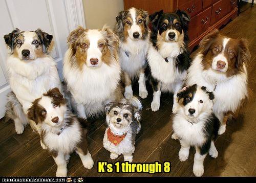 K's 1 through 8