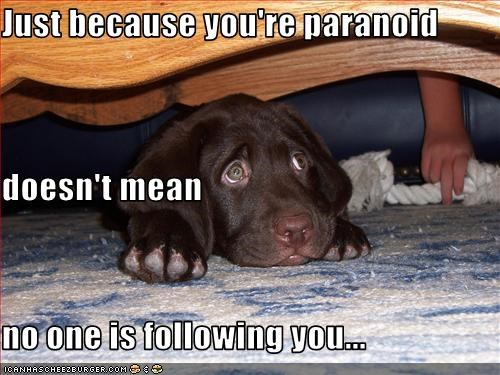 Just because you're paranoid doesn't mean no one is following you...