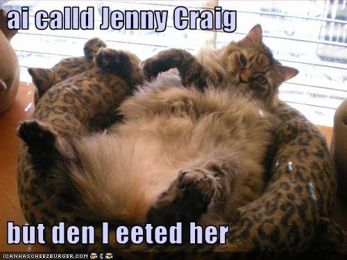 cat,diet,eated,jenny craig