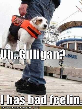 Uh..Gilligan? I has bad feelin...