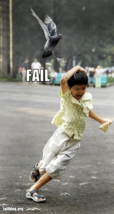 Kid fail or bird win?