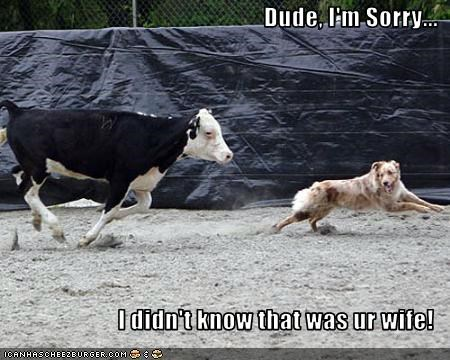 Dude, I'm Sorry...  I didn't know that was ur wife!