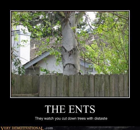 deforestation,demotivational,ents,green,Lord of the Rings,Sad,trees