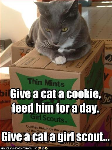 Give a cat a cookie, feed him for a day.   Give a cat a girl scout...