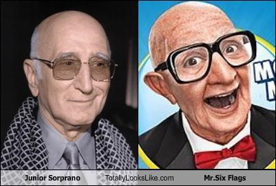 Junior Sorprano Totally Looks Like Mr.Six Flags