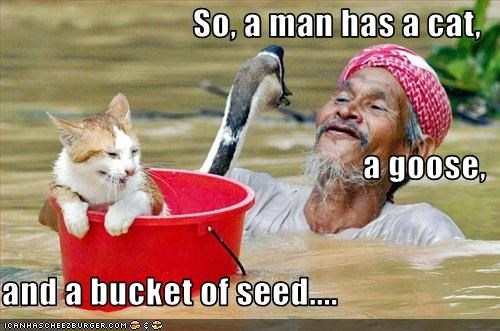 So, a man has a cat, a goose, and a bucket of seed....