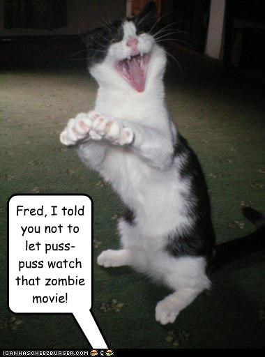 Fred, I told you not to let puss-puss watch that zombie movie!
