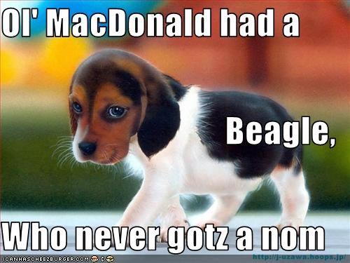 Ol' MacDonald had a  Beagle, Who never gotz a nom