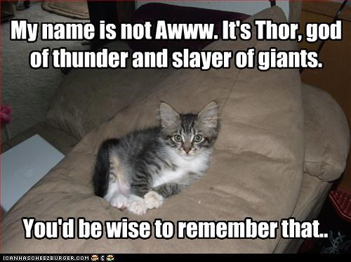 My name is not Awww. It's Thor, god of thunder and slayer of giants.
