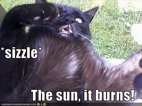 *sizzle* The sun, it burns!