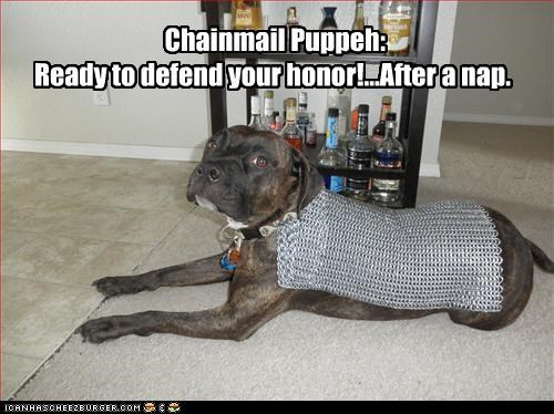 Chainmail Puppeh:  Ready to defend your honor!...After a nap.
