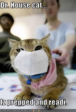 Dr. House cat...  Iz prepped and readi.