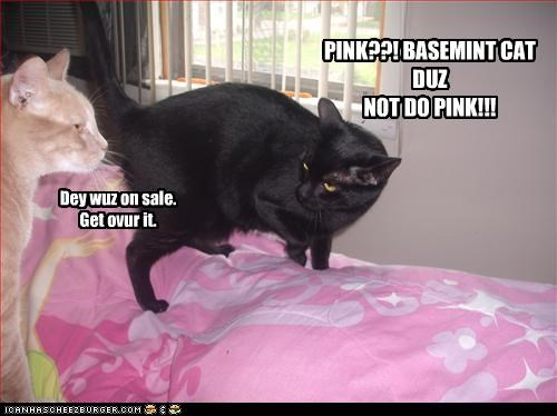 PINK??! BASEMINT CAT DUZ NOT DO PINK!!!