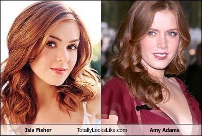 Isla Fisher Totally Looks Like Amy Adams