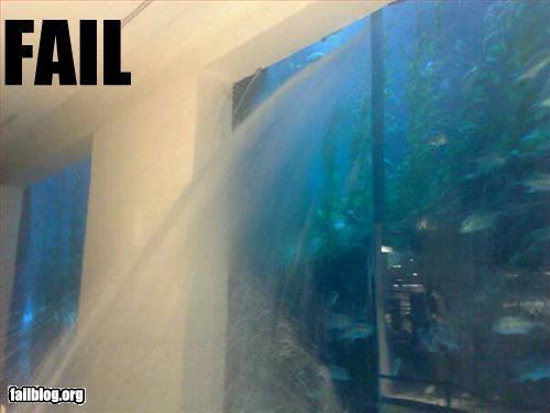 aquarium,broken,g rated,water,window