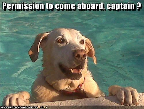 Permission to come aboard, captain ?