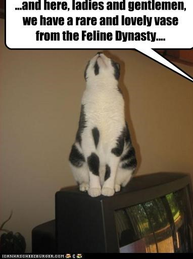 ...and here, ladies and gentlemen, we have a rare and lovely vase from the Feline Dynasty....