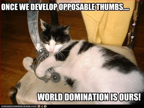 ONCE WE DEVELOP OPPOSABLE THUMBS....