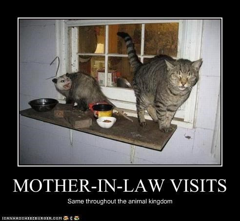 MOTHER-IN-LAW VISITS