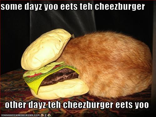 some dayz yoo eets teh cheezburger  other dayz teh cheezburger eets yoo