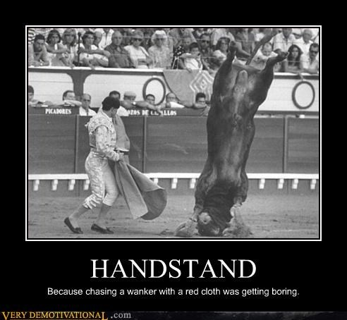 bull fighting,demotivational,europe,handstand,Pure Awesome,red cloth,Sad