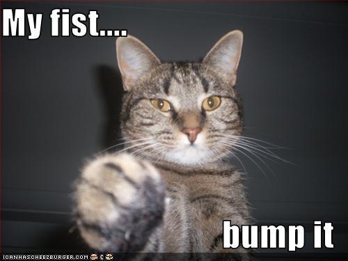 My fist....  bump it