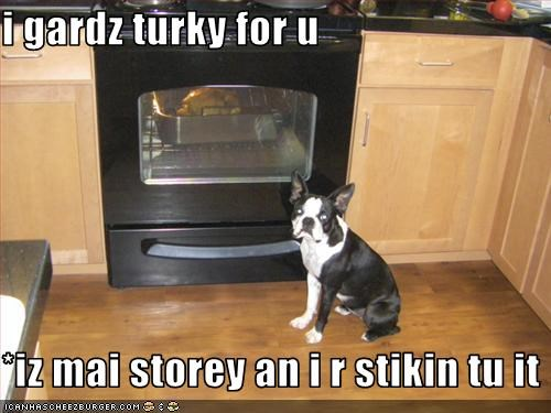 i gardz turky for u  *iz mai storey an i r stikin tu it